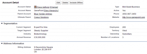Salesforce Account page layout to capture segmentation data.